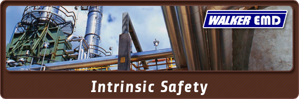 Intrinsic Safety