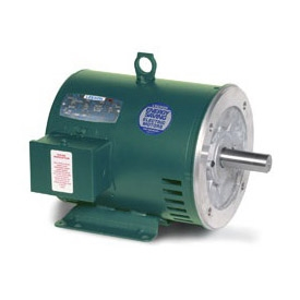 116616 00 leeson 2hp for Leeson explosion proof motor